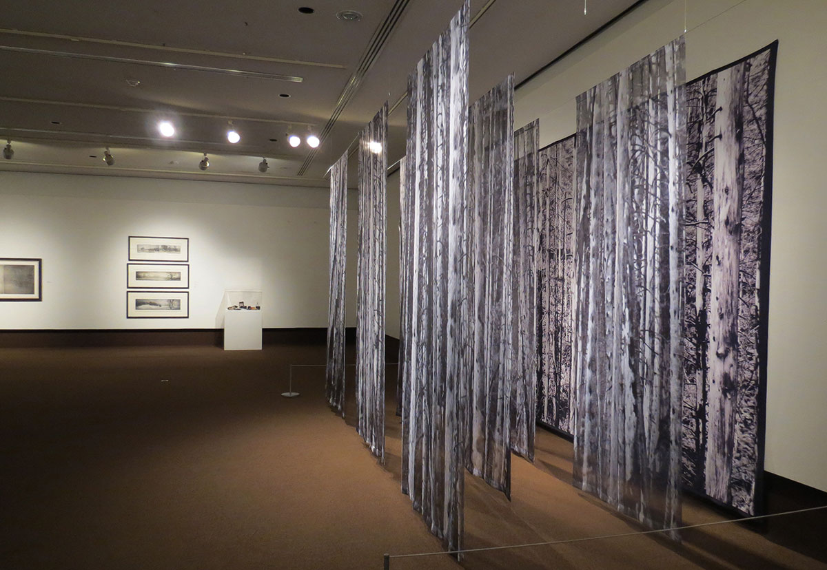 Home - Thunder Bay Art Gallery