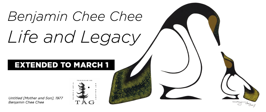 Benjamin Chee Chee Life and Legacy exhibition banner image