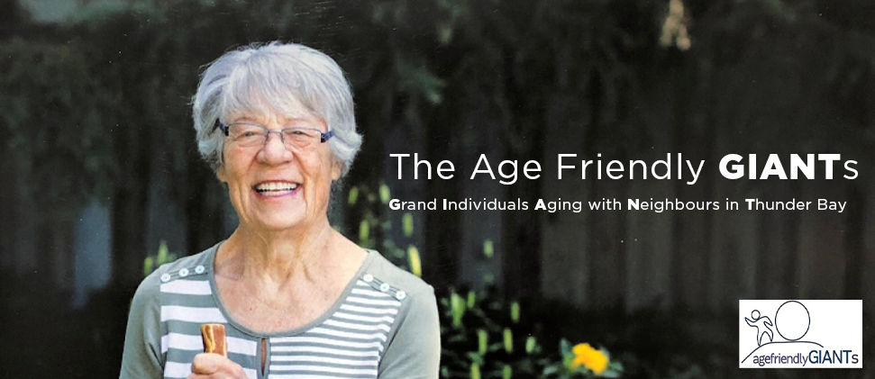 The Age Friendly Giants exhibition banner image