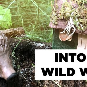 Into the Wild Woods Summer Art Camp Banner Image