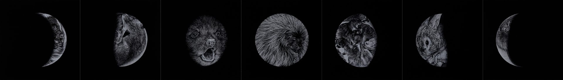 white charcoal on paper 38.1 x 38.1 cm (each) Thunder Bay Art Gallery Collection, Purchased in part through the support of the Elizabeth L. Gordon Art Program, a program of the Walter and Duncan Gordon Foundation and administered by the Ontario Arts Foundation, 2017