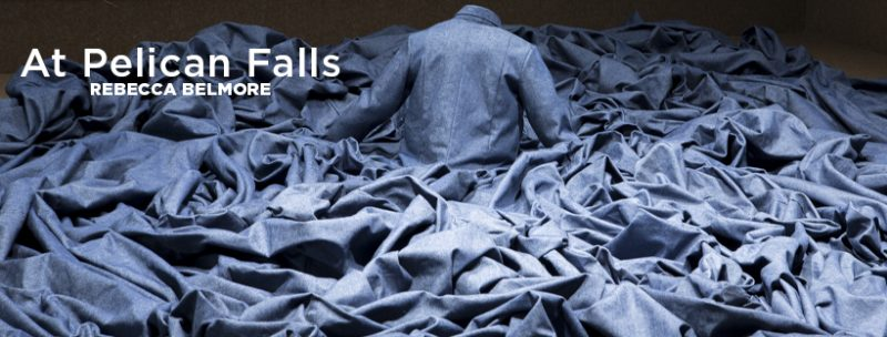 At Pelican Falls exhibition banner image