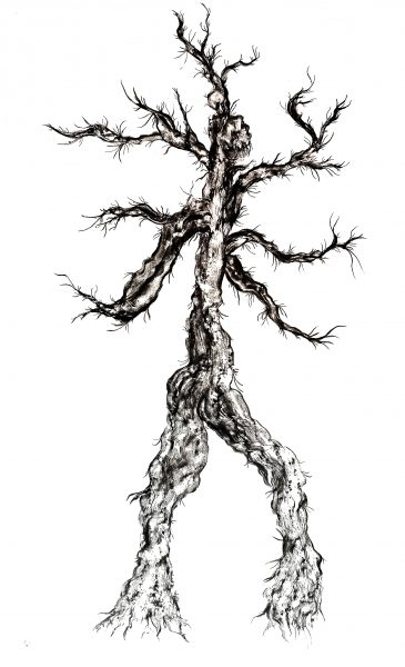 ERIKA NIVA, Pine Spirit, 5 x 3 ft, charcoal rubbing, 2021